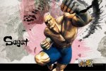 3694-video_games_super_street_fighter_iv_wallpaper
