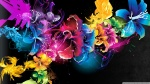 colorful_flowers_8-wallpaper-1920x1080