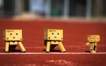 Danbo sprint race