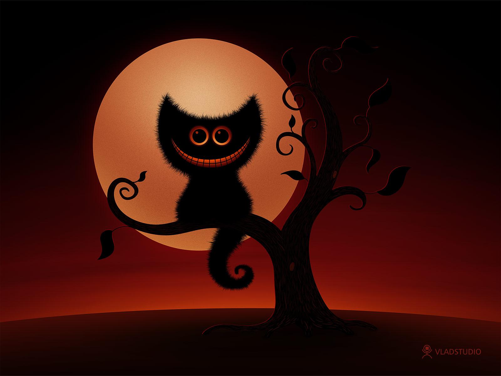 Most Inspiring Wallpaper Halloween Horse - halloween-kitten  You Should Have_329234.jpeg