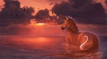 horse-in-water