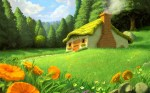 house-in-a-meadow