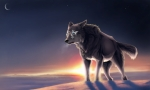 lonely-wolf
