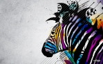 psychedelic-artistic-zebra