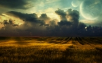 sunset-field