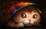 Cute Cat Hiding