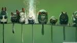 funny_lemurs-wallpaper-1920x1080
