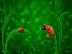 ladybug-and-chameleon
