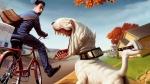 nice-dog