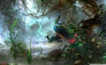painted_peacocks-wallpaper-2560x1600