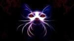 sybercat_by_mikatrta-d4v6wvx